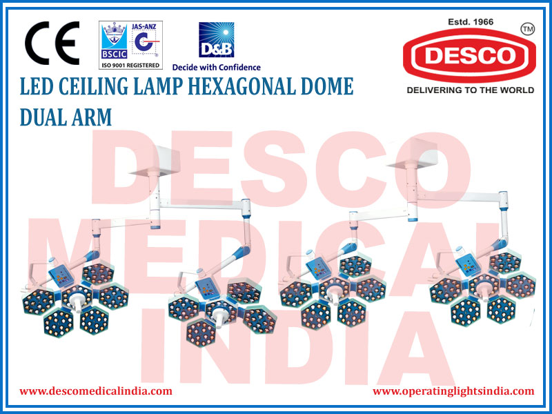 LED CEILING LAMP HEXAGONAL DOME DUAL ARM