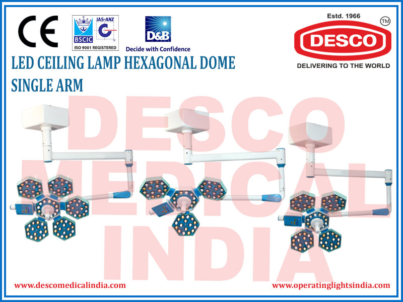 LED CEILING LAMP HEXAGONAL DOME SINGLE ARM