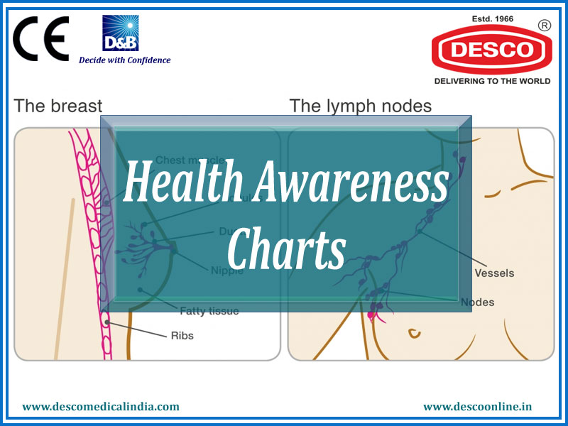 Health Awareness Charts